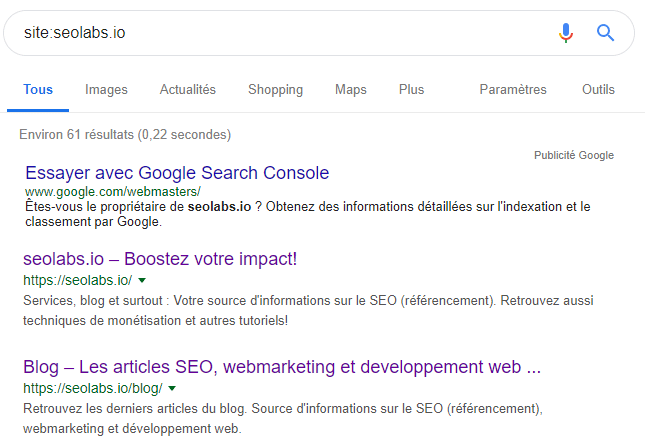 Rechercher son site sur Google